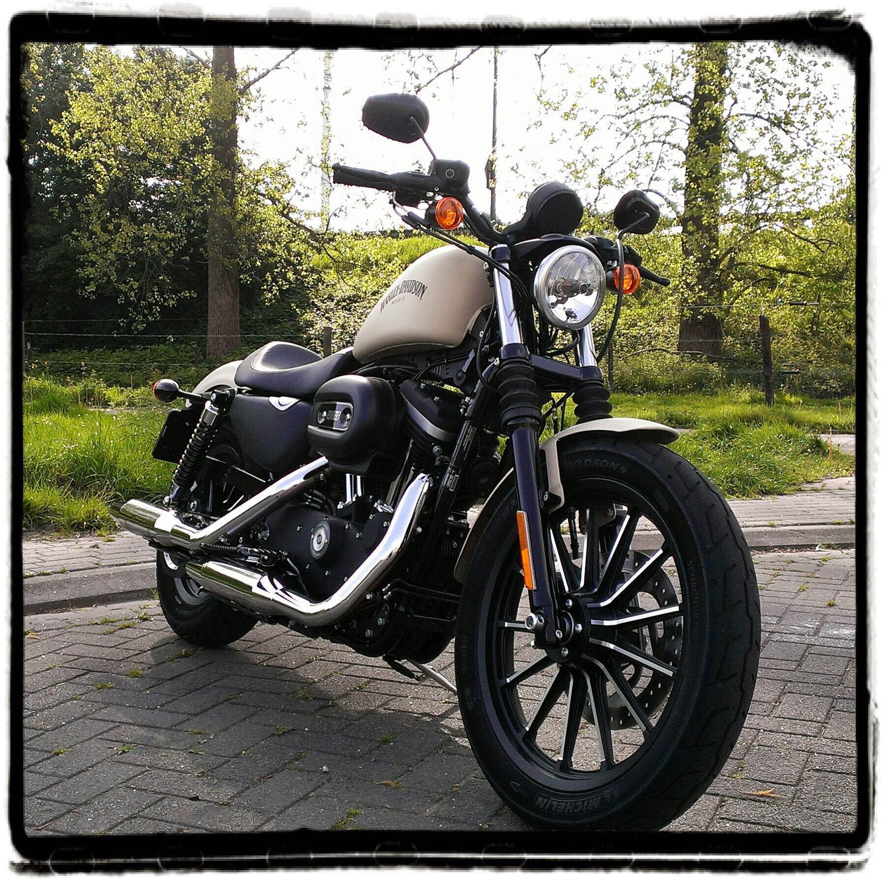 Eerste Kennismaking Met De Harley-Davidson Sportster Iron