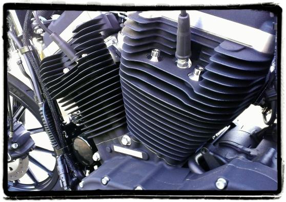 Harley-Davidson Iron 883 22