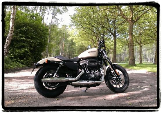 Harley-Davidson Iron 883 24