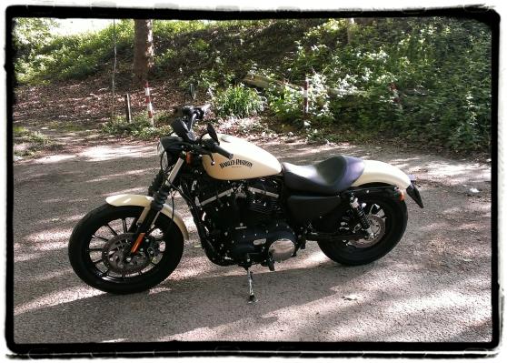 Harley-Davidson Iron 883 26