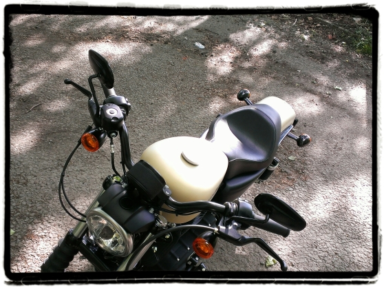 Harley-Davidson Iron 883 27
