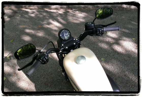 Harley-Davidson Iron 883 28