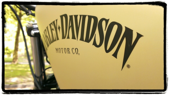 Harley-Davidson Iron 883 30