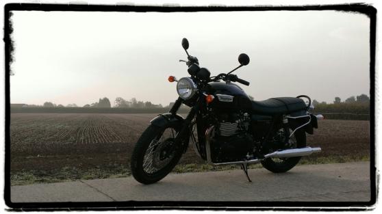 triumph-bonneville-t100-black-veld