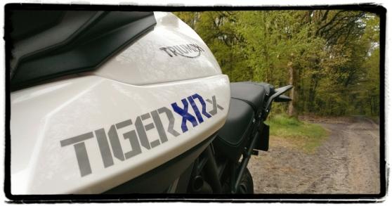 triumph-tiger-800-xrx-stickering