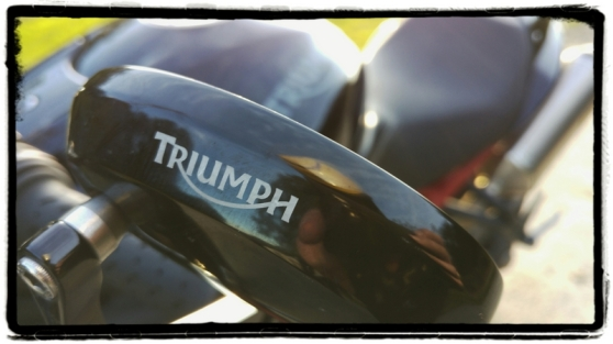 triumph-speed-triple-r-barend-mirror