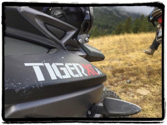 triumph-tiger-800-xca-offroad-alps